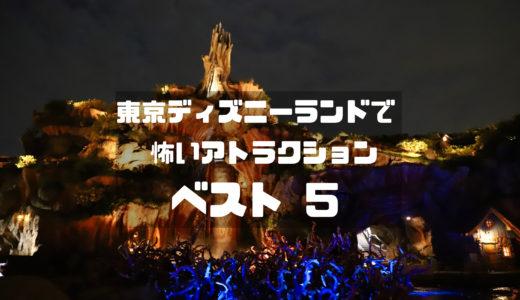 初めての方必見!東京ディズニーランドで怖いアトラクションベスト5
